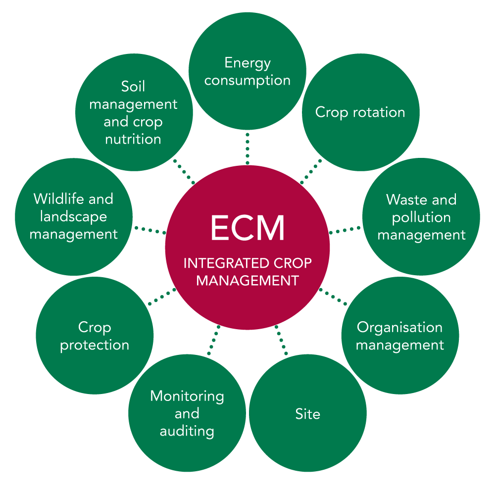 Integrated Crop Management | ECM